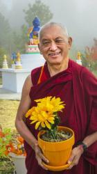 Lama Zopa Rinpoche, 2010. Photo: Ven. Roger Kunsang.