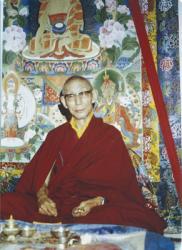 Kyabje Trijang Rinpoche, Tushita Mahayana Meditation Centre, New Delhi, 1980. Photo: Roger Kunsang.